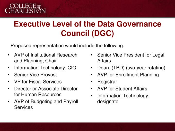 Executive Level of the Data Governance Council (DGC)