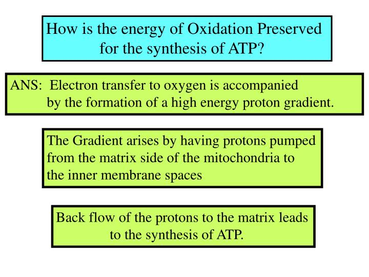 How is the energy of Oxidation Preserved