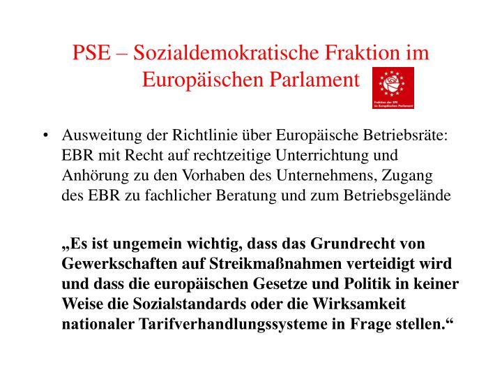 PSE – Sozialdemokratische Fraktion im Europäischen Parlament