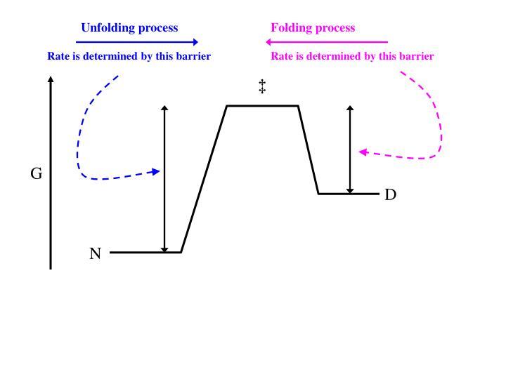 Unfolding process