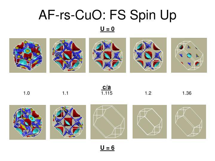 AF-rs-CuO: FS Spin Up