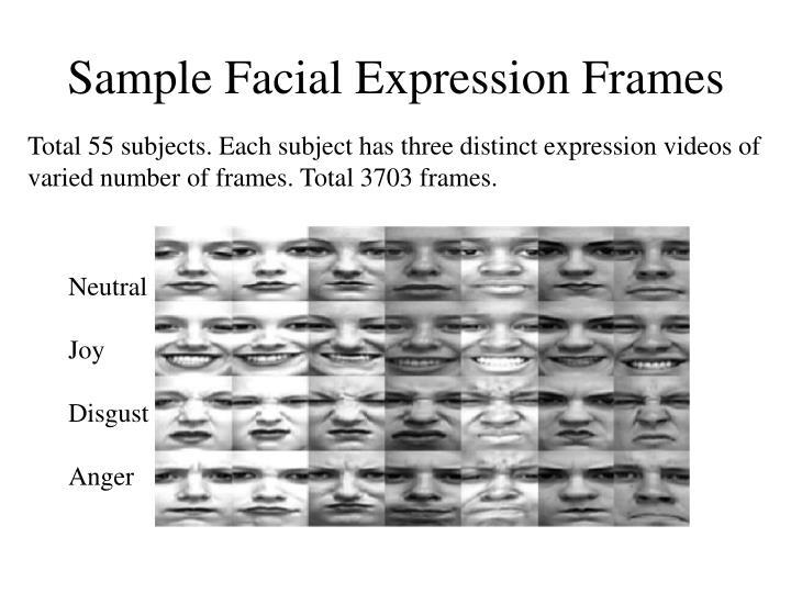 Sample Facial Expression Frames