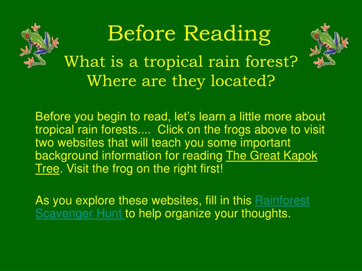 What is a tropical rain forest?