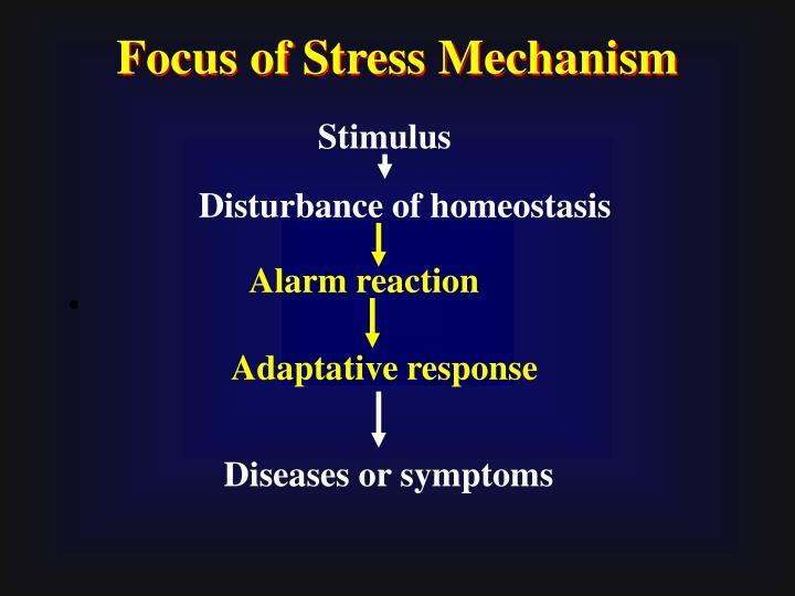 Focus of Stress Mechanism
