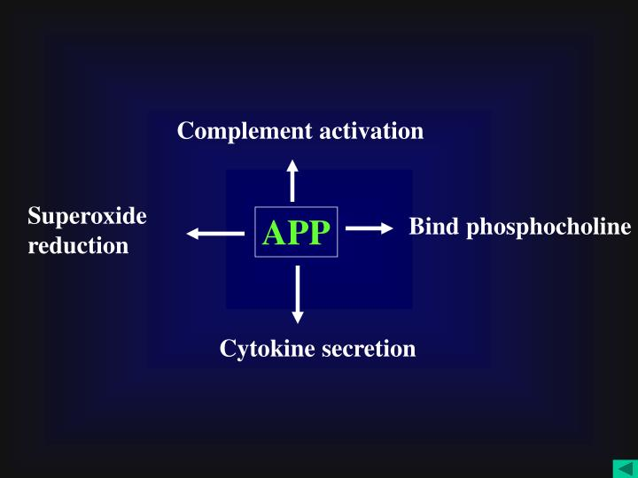 Complement activation