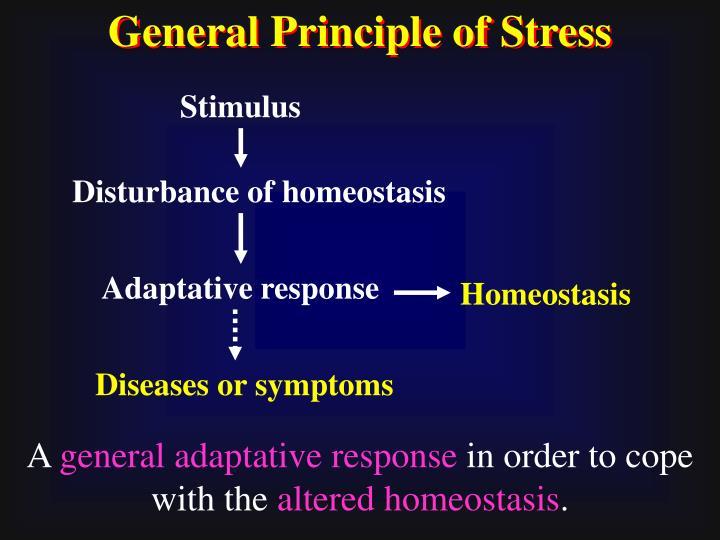 General Principle of Stress