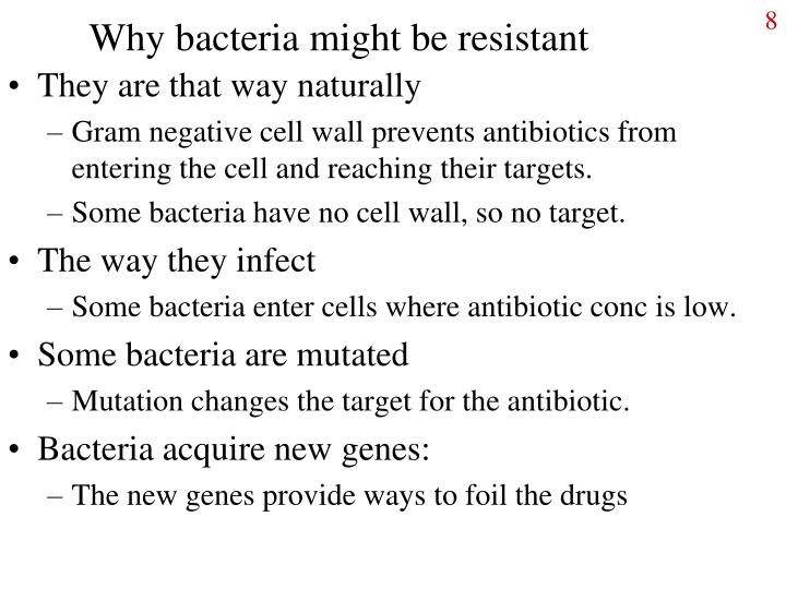 Why bacteria might be resistant
