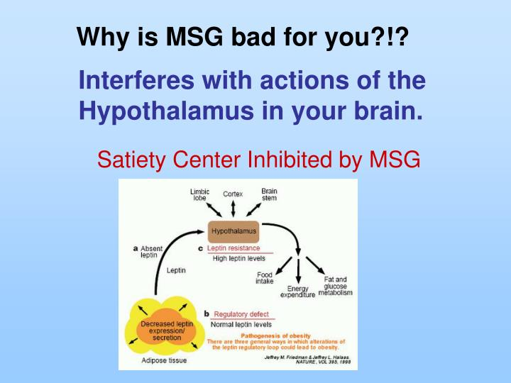 Why is MSG bad for you?!?