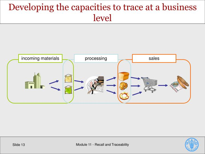 Developing the capacities to trace at a business level