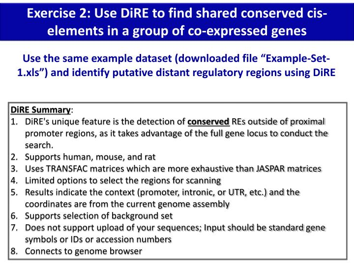 Exercise 2: Use DiRE to find shared conserved cis-elements in a group of co-expressed genes