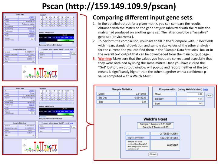 Pscan (http://159.149.109.9/pscan)