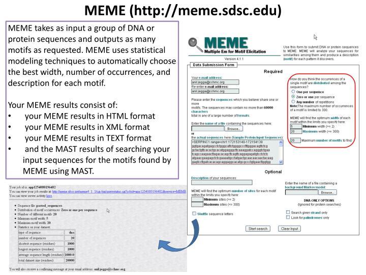 MEME (http://meme.sdsc.edu)