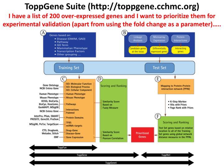 ToppGene Suite (http://toppgene.cchmc.org)