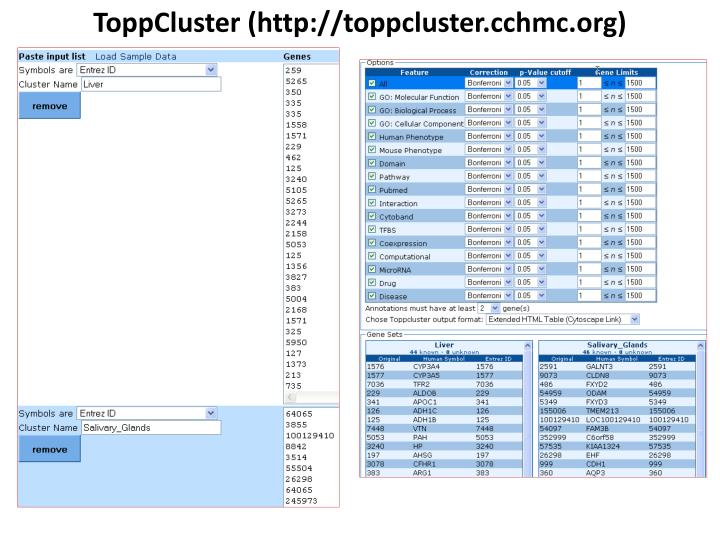 ToppCluster (http://toppcluster.cchmc.org)