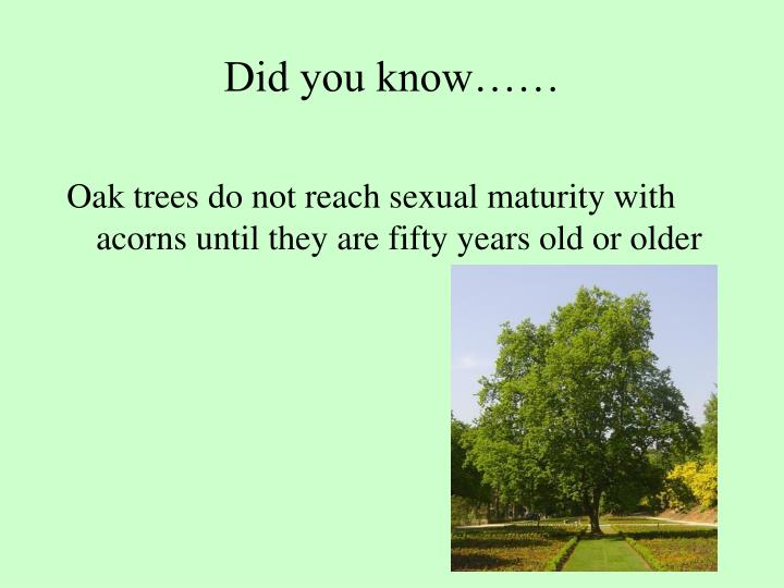 Did you know……