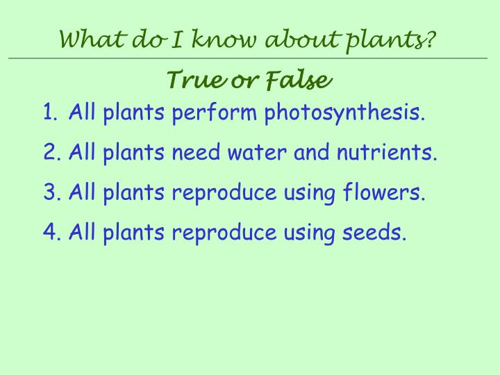 What do I know about plants?