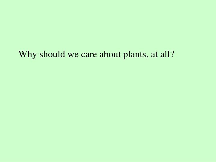 Why should we care about plants, at all?