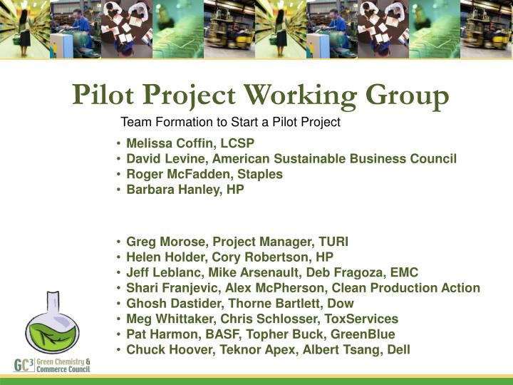 Pilot Project Working Group