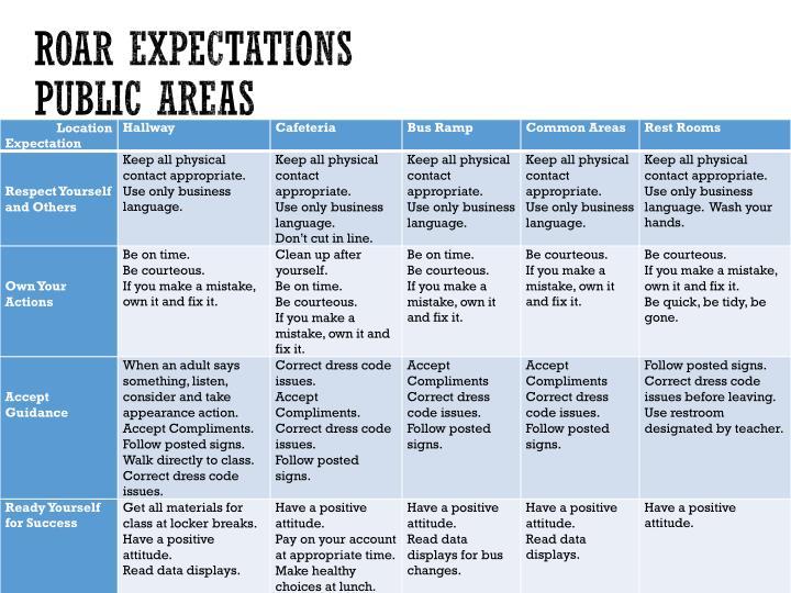 ROAR Expectations
