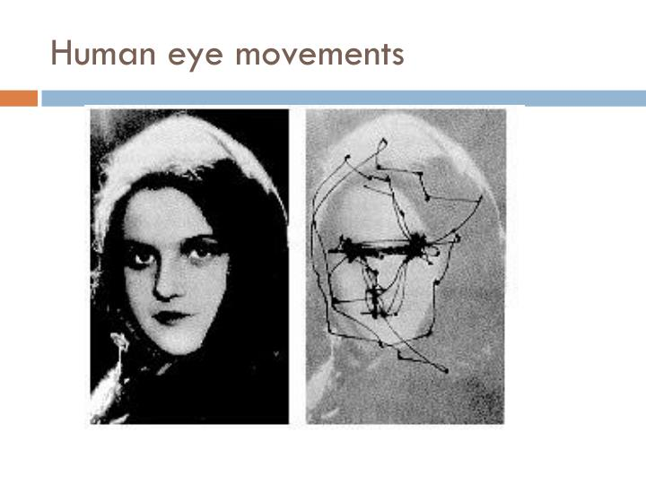Human eye movements