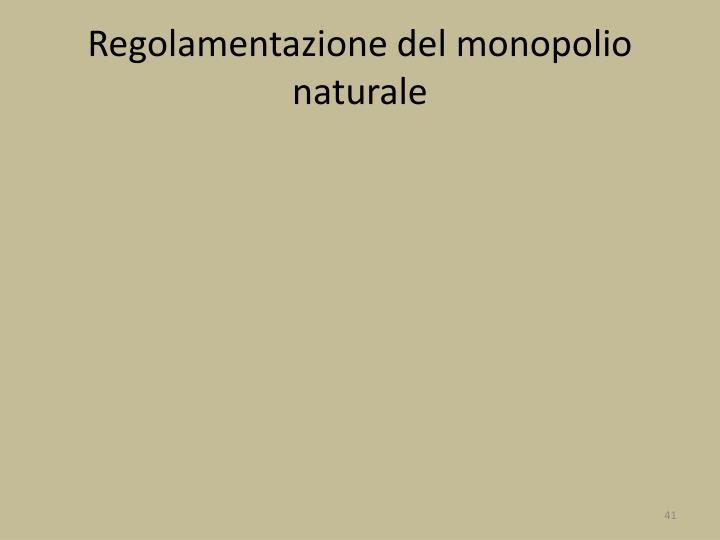 Regolamentazione del monopolio naturale