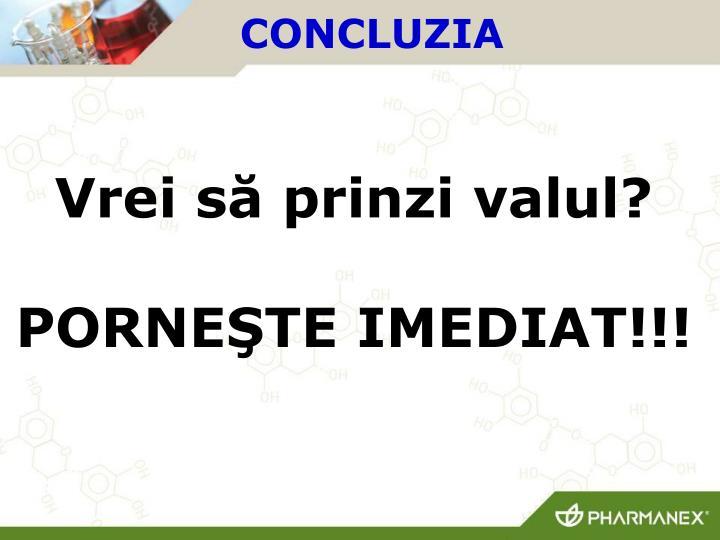 CONCLUZIA