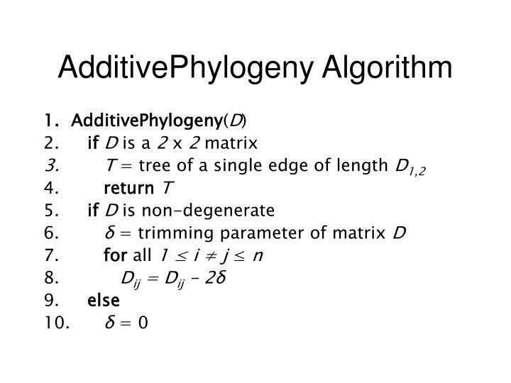 AdditivePhylogeny Algorithm