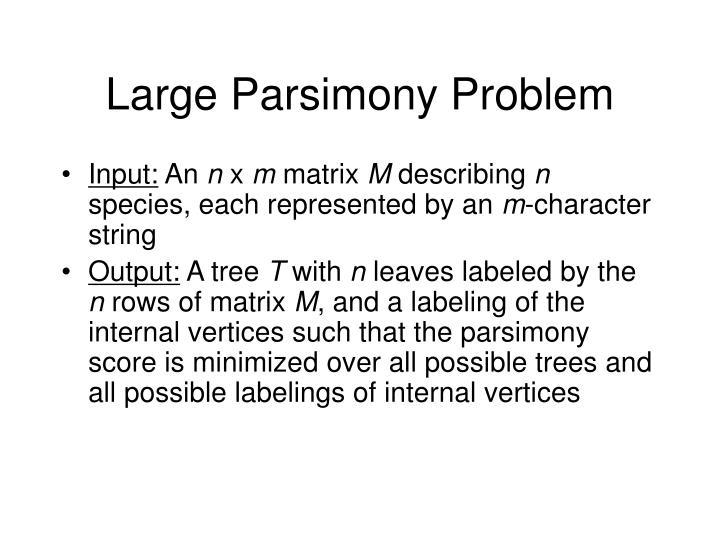 Large Parsimony Problem