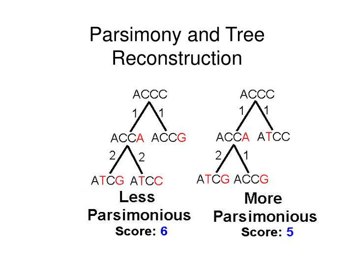 Parsimony and Tree Reconstruction