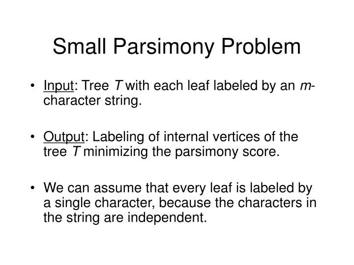 Small Parsimony Problem