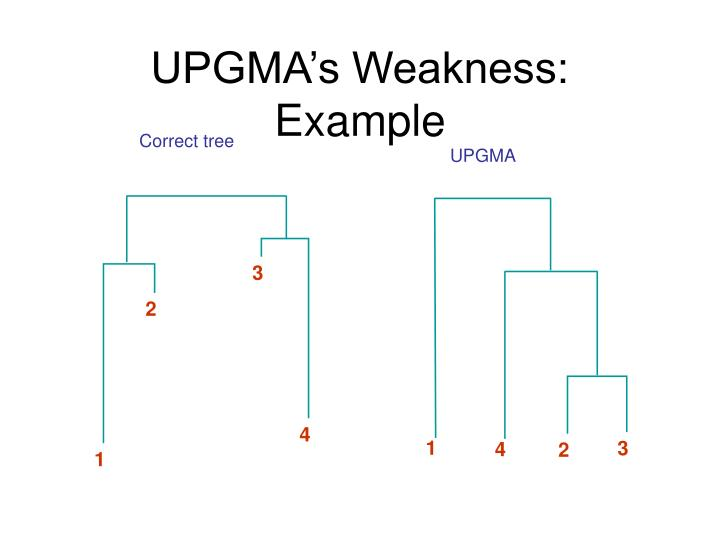 Correct tree