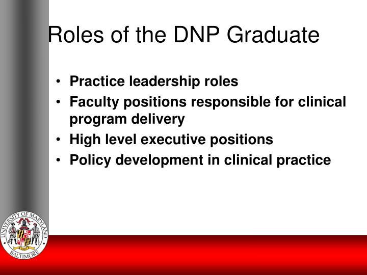Roles of the DNP Graduate