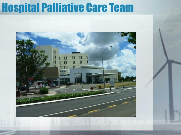 Hospital Palliative Care Team