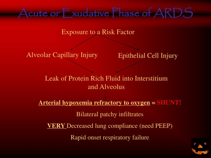 Acute or Exudative Phase of ARDS
