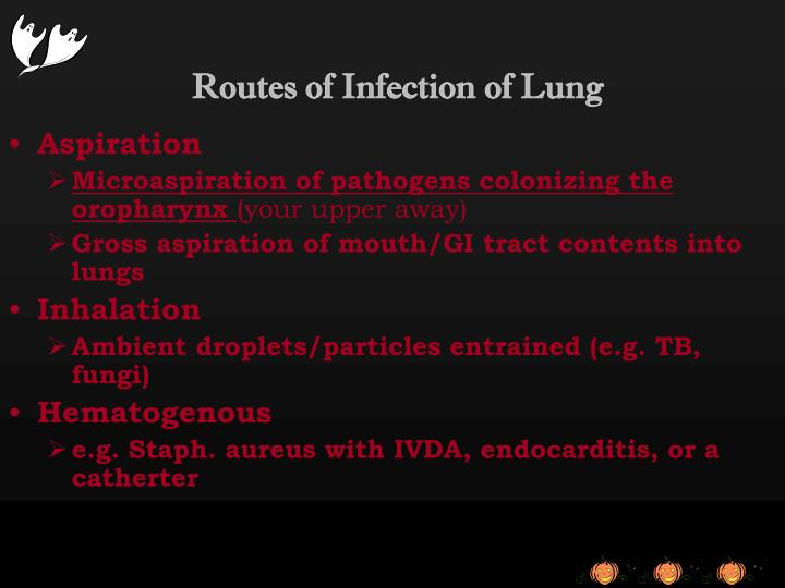 Routes of Infection of Lung