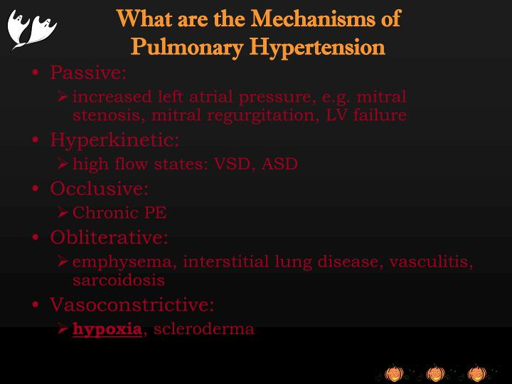 What are the Mechanisms of