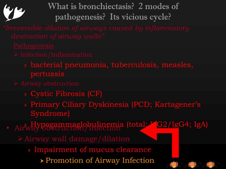 What is bronchiectasis?  2 modes of