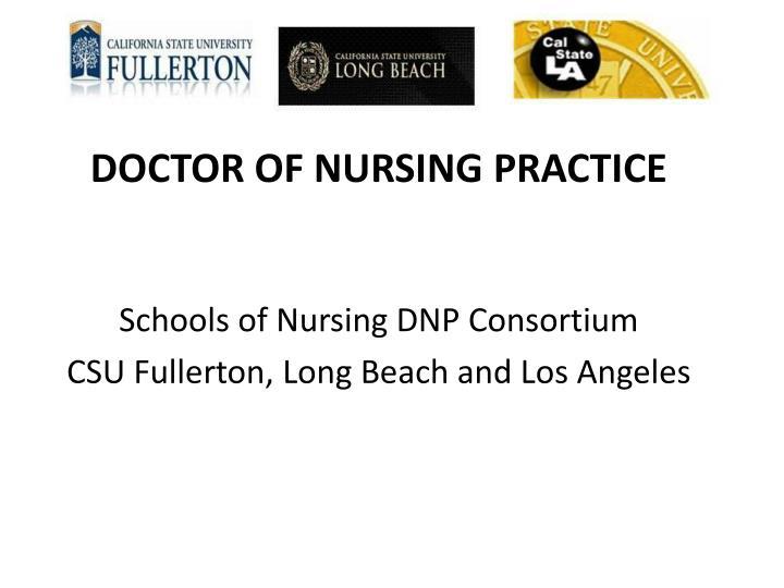 Schools of Nursing DNP Consortium