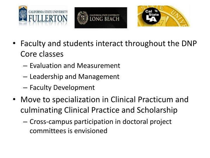 Faculty and students interact throughout the DNP Core classes