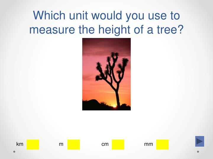 Which unit would you use to measure the height of a tree?
