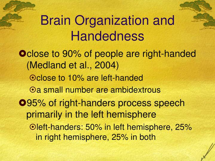 Brain Organization and Handedness