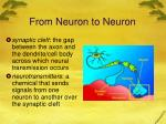 from neuron to neuron2