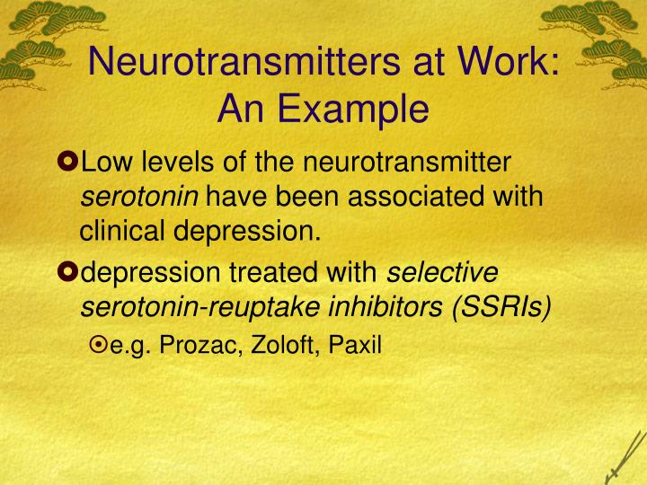 Neurotransmitters at Work: