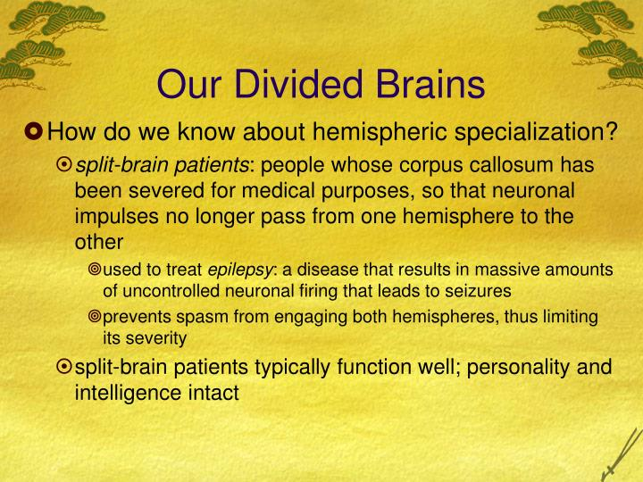 Our Divided Brains