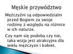 m skie przyw dztwo4