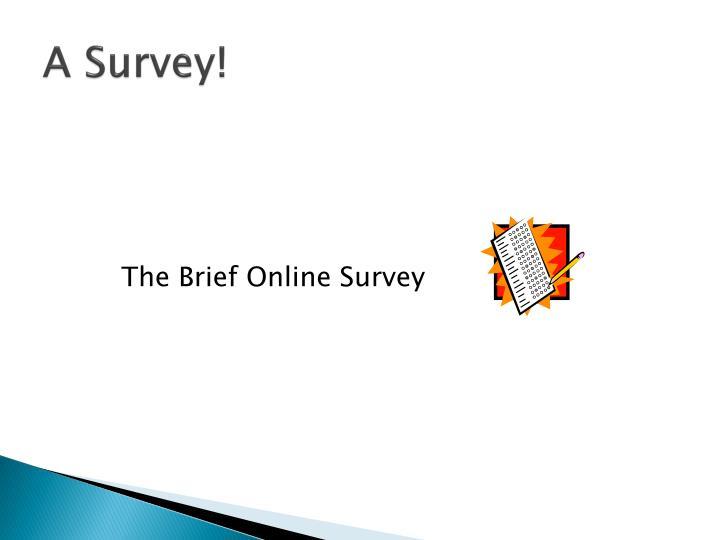 A Survey!
