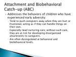 attachment and biobehavioral catch up abc