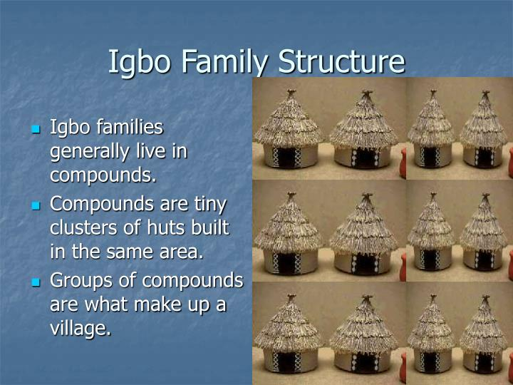 Igbo Family Structure