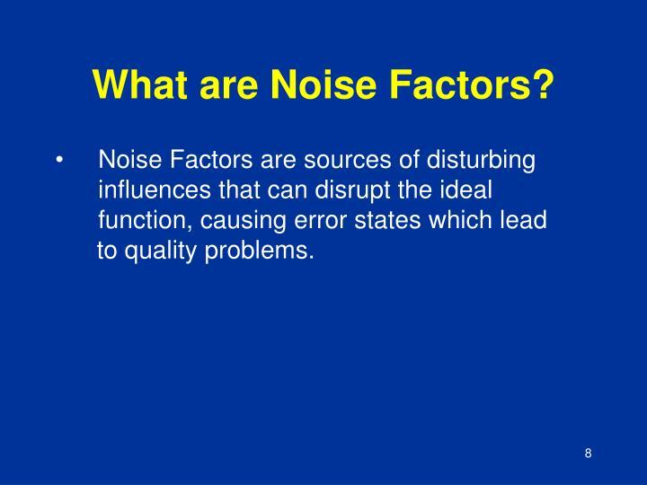 What are Noise Factors?
