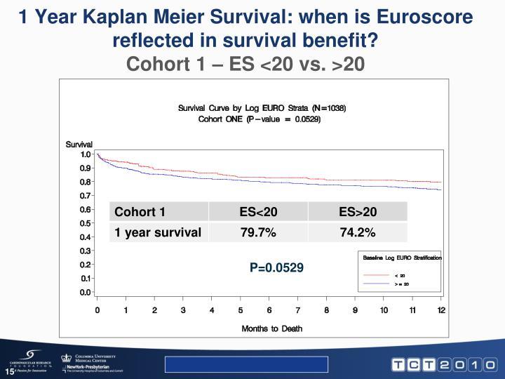 1 Year Kaplan Meier Survival: when is